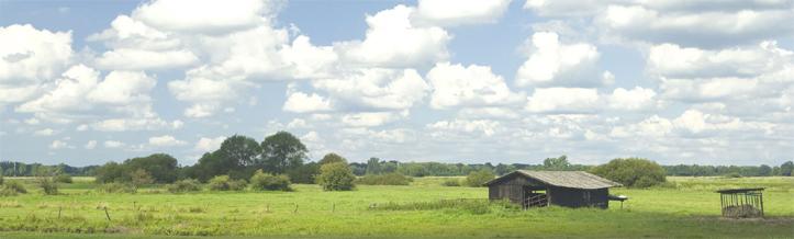 Weite Landschaft mit Wiesen und Weiden