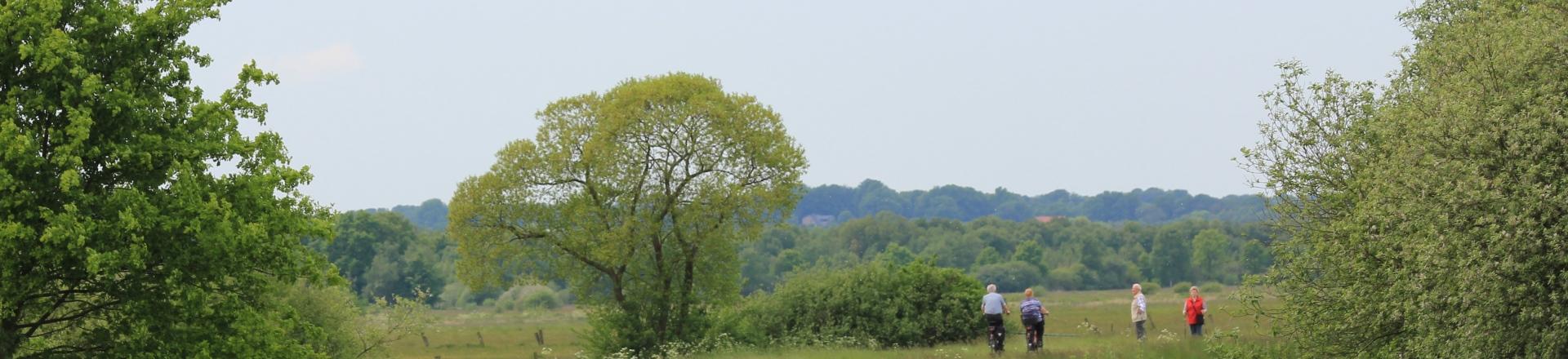 Worpswede Moor (c) Ks